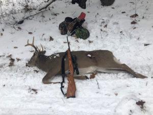 Deer 11-7-19